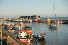 Bridlington, Fishing Fleet at Bridlington, East Yorkshire © gary radford